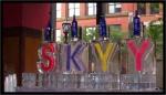 skyy luge 4 blocks.jpg